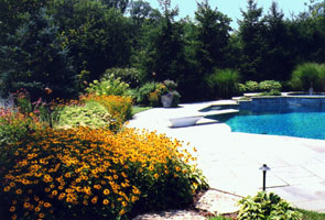 Evergreens, grasses, & continuous color give year round interest around heated pool.